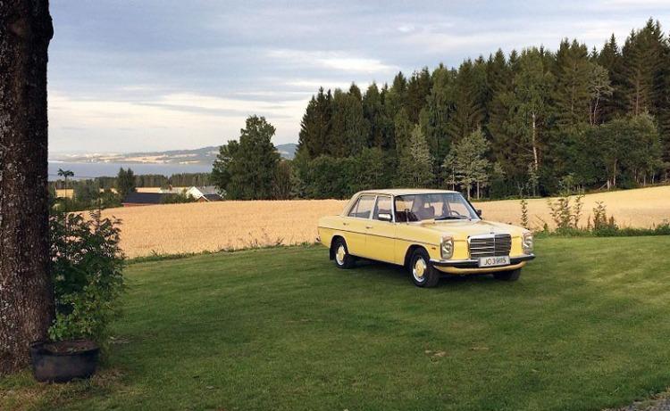 Mercedes 230_6_16
