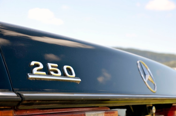 Mercedes W123 250_3